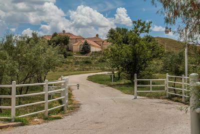 Amarillo Single Family Home For Sale: 10401 Tascosa Rd