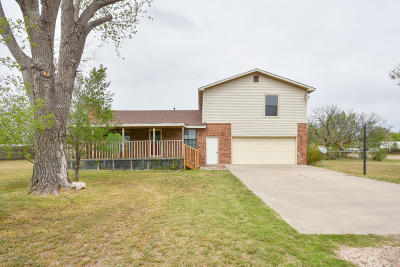 Single Family Home For Sale: 8861 North St