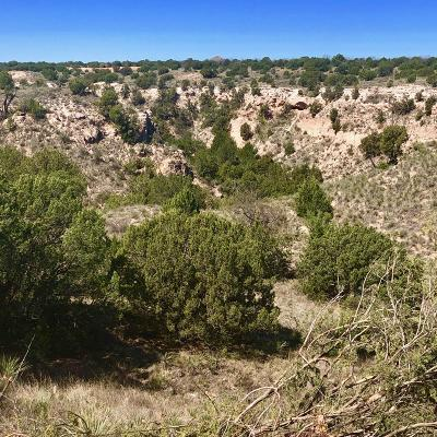 Amarillo Residential Lots & Land For Sale: 17100 Johns Way Blvd.