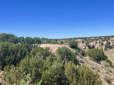 Amarillo Residential Lots & Land For Sale: 17500 Johns Way Blvd.