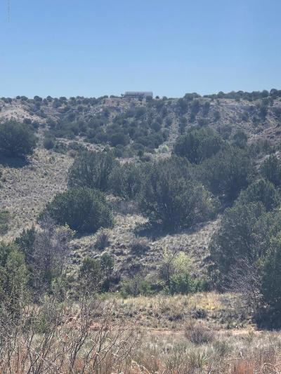 Amarillo Residential Lots & Land For Sale: 17750 Johns Way Blvd.