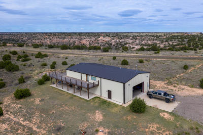 Amarillo Single Family Home For Sale: 6950 Rolling Prairie Trl