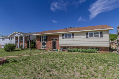 Borger Single Family Home For Sale: 1502 Primrose Ln