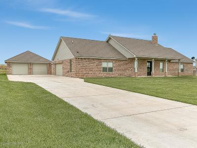 Amarillo Single Family Home For Sale: 13321 Wandering Rd