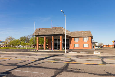 Potter County Commercial For Sale: 2035 Paramount Blvd