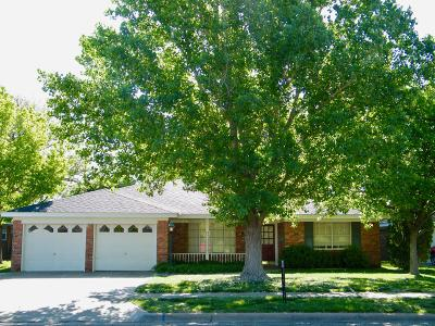 Amarillo Single Family Home For Sale: 3727 Clearwell St