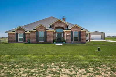 Amarillo Single Family Home For Sale: 12903 Fm 2219