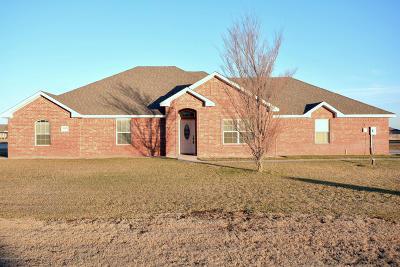 Amarillo Single Family Home For Sale: 14401 Suzanna St