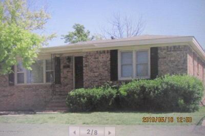 Borger Single Family Home For Sale: 221 Garrett St.