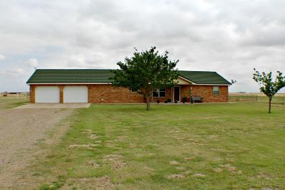 Amarillo Single Family Home For Sale: 275 Fm2575