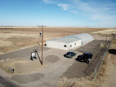 Amarillo Commercial For Sale: 6753 S Grand S St