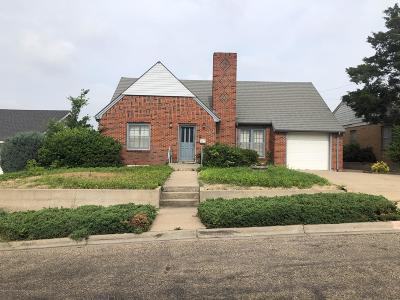 Borger Single Family Home For Sale: 513 Austin St