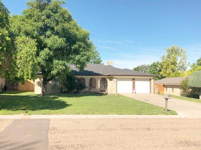 Borger Single Family Home For Sale: 216 Skycrest St