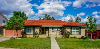 Borger Single Family Home For Sale: 1411 Bluebonnet St
