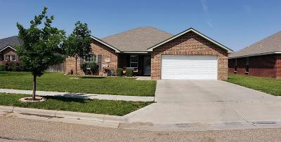 Amarillo Single Family Home For Sale: 6500 Nick St