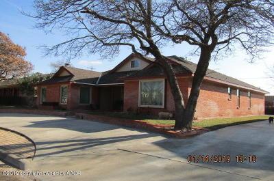 Borger Single Family Home For Sale: 1205 University Pl
