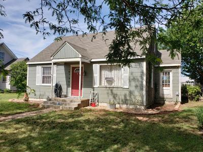 Borger Single Family Home For Sale: 1206 Hemlock St