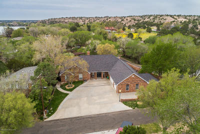 Amarillo Single Family Home For Sale: 412 Dana Ln
