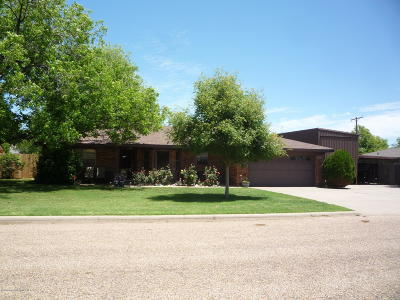 Fritch Single Family Home For Sale: 407 Romero St