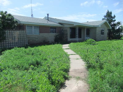 Carson County Single Family Home For Sale: 7590 Henry Rd