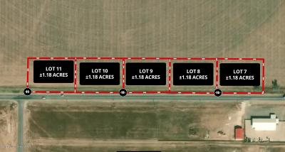 Armstrong County, Randall County Commercial For Sale: Lot 8 Fm 2219