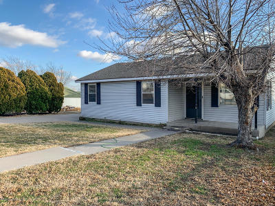 Borger Single Family Home For Sale: 121 Cottonwood St