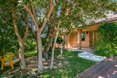 Amarillo Single Family Home For Sale: 119 Caprock Ln