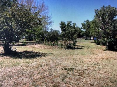 Fritch Residential Lots & Land For Sale: 224 Ranch Rd