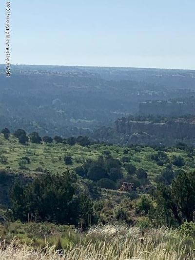 Amarillo Residential Lots & Land For Sale: 7801 Canyon Bend Rd
