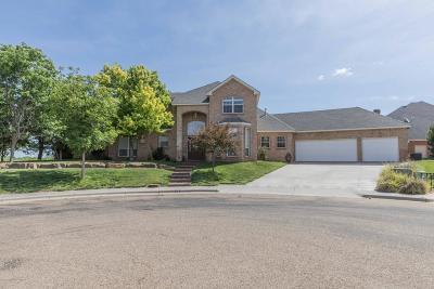 Potter County Single Family Home For Sale: 19 Sandhills Ln