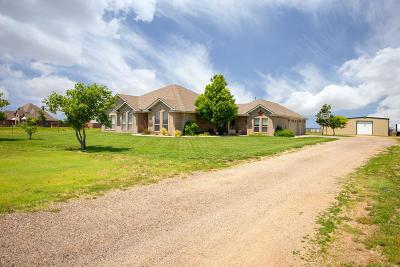 Amarillo Single Family Home For Sale: 301 Graystone Ln