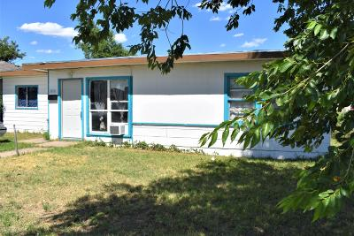 Potter County Single Family Home For Sale: 1110 Bluebell St