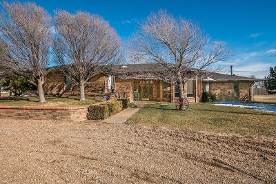 Vega Single Family Home For Sale: 6464 Us Hwy 385