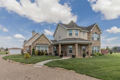 Amarillo Single Family Home For Sale: 9610 Ottobahn