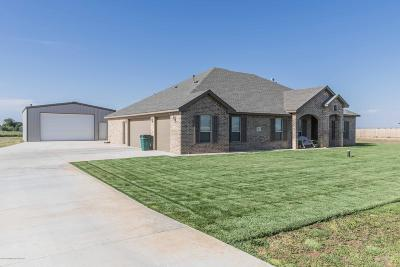 Amarillo Single Family Home For Sale: 9601 Help Ln