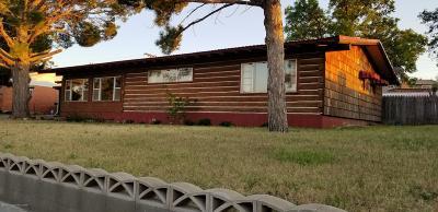 Borger Single Family Home For Sale: 200 Santa Fe St