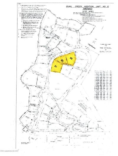 Amarillo Residential Lots & Land For Sale: 31-33 Citadel Dr