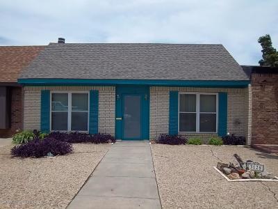 Amarillo Condo/Townhouse For Sale: 3128 28th Ave