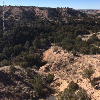 Canyon Residential Lots & Land For Sale: 7600 Hidden View Rd