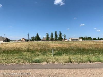 Amarillo Residential Lots & Land For Sale: 8831 Flint St