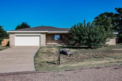 Amarillo Single Family Home For Sale: 205 Rancho Trl