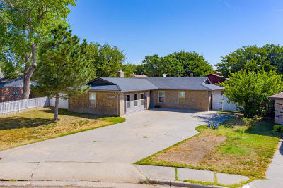 Amarillo Single Family Home For Sale: 5205 Emory Ct