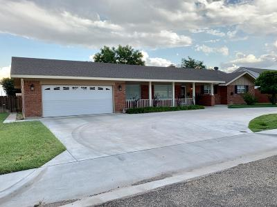 Borger Single Family Home For Sale: 1501 Gawain St