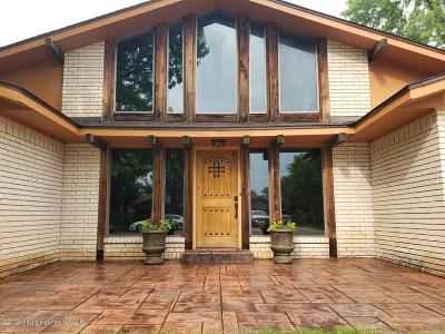Borger Single Family Home For Sale: 213 Somerset St