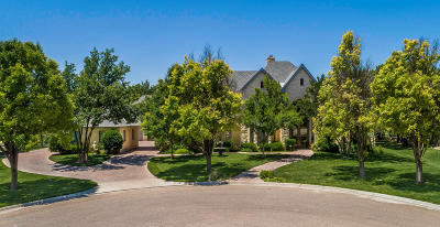 Amarillo Single Family Home For Sale: 1601 Club View Dr