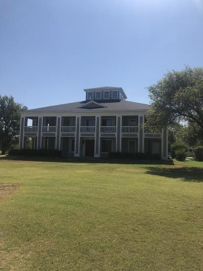 Borger Single Family Home For Sale: 200 Golf Road