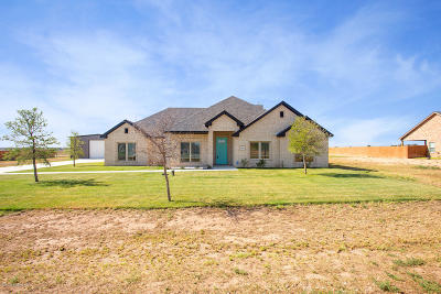 Amarillo Single Family Home For Sale: 9525 Help Ln