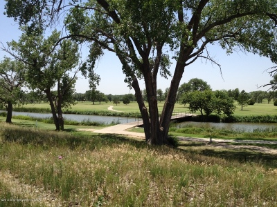 Canyon Residential Lots & Land For Sale: Palo Duro Creek Business Park