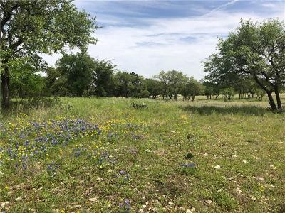 Georgetown Residential Lots & Land For Sale: 300 Windmill Ranch Rd