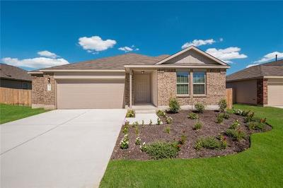 Kyle Single Family Home For Sale: 164 Mineral Springs Dr
